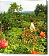 Hershey Garden Canvas Print