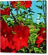 Hibiscus In Naptown Canvas Print