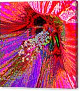 Hibiscus Macro Abstract Canvas Print