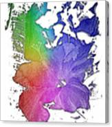 Hibiscus S D Z 2 Cool Rainbow 3 Dimensional Canvas Print
