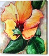 Hibiscus  Sunny Canvas Print