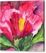 Hibiscus Unfolding Canvas Print