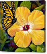 Hibiscus With Monarch Canvas Print