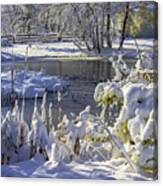 Hickory Nut Grove Landscape Canvas Print