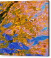 Hidden Dimensions Canvas Print