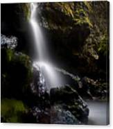 Hidden Falls Canvas Print