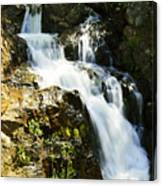 Hidden Falls Canvas Print