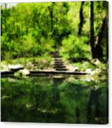 Hidden Pond At Schuylkill Valley Nature Center Canvas Print
