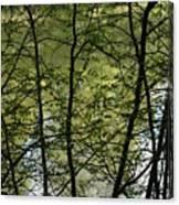 Hidden Pond Natural Fence Canvas Print
