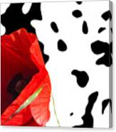 Hidden Poppy Canvas Print