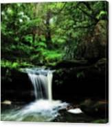 Hidden Rainforest - Painterly Canvas Print