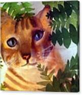 Hide And Seek Cat Canvas Print