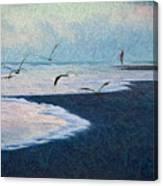 Hide Tide Canvas Print