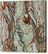 Hiding Figures Canvas Print