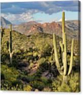 High Desert Peaks Canvas Print
