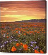 High Desert Sunset Serenade Canvas Print
