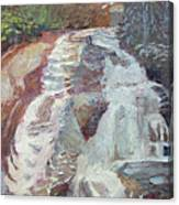 High Falls Dupont Forest Canvas Print