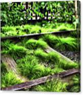 High Line Nyc Railroad Tracks Canvas Print