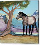 High Meadow Mustang Canvas Print