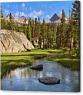 High Sierra Stream Canvas Print