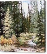 High Uintah Stream Canvas Print