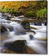 Highland River In Autumn Canvas Print