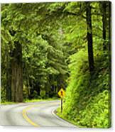 Highway Curve Canvas Print