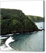 Highway To Hana Canvas Print