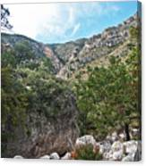 Hiking Guadalupe Canvas Print