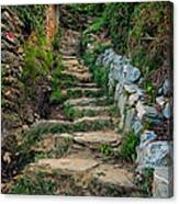 Hiking In Cinque Terre Italy Canvas Print