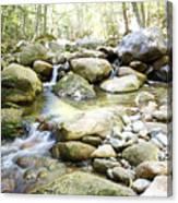 Hiking Near The Trail Canvas Print