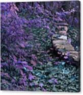 Hiking Trail Infrared Canvas Print