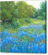 Hill Country Blues Canvas Print