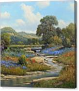 Hill Country Draw Canvas Print