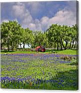Hill Country Farming Canvas Print