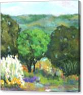 Hill Country II Canvas Print