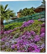 Hill Of Flowers Canvas Print