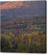 Hill Side Canvas Print