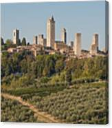 Hill Town Of San Gimignano Canvas Print