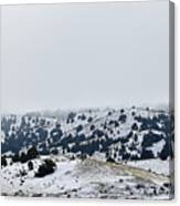 Hills In Fog Canvas Print