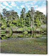 Hillsborough River 1 Canvas Print