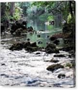 Hillsborough River II Canvas Print