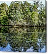 Hillsborough River Panorama 1 Canvas Print