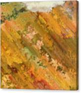 Hillside Flowers I Canvas Print