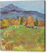 Hillside Grazing Canvas Print