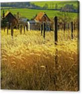 Hillside In Fall Jalaksova, Slovakia Canvas Print