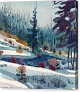 Hillside In Winter Canvas Print