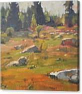 Hillside Patterns Canvas Print