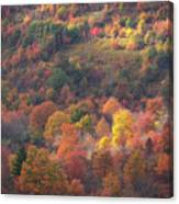 Hillside Rhythm Of Autumn Canvas Print
