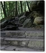 Hillside Trail Canvas Print